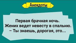 Анекдоты Первая Брачная Ночь Подборка Веселых Анекдотов Юмор