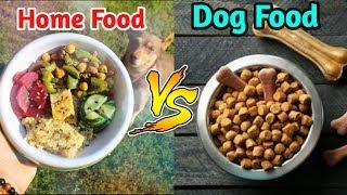 HOMEMADE DOG FOOD VS DOG FOOD / IN HINDI/ कोन सा Food Better he homemade dog food or Dog food