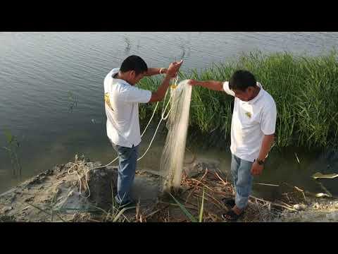 Saudi Arabia Fishing Part 1