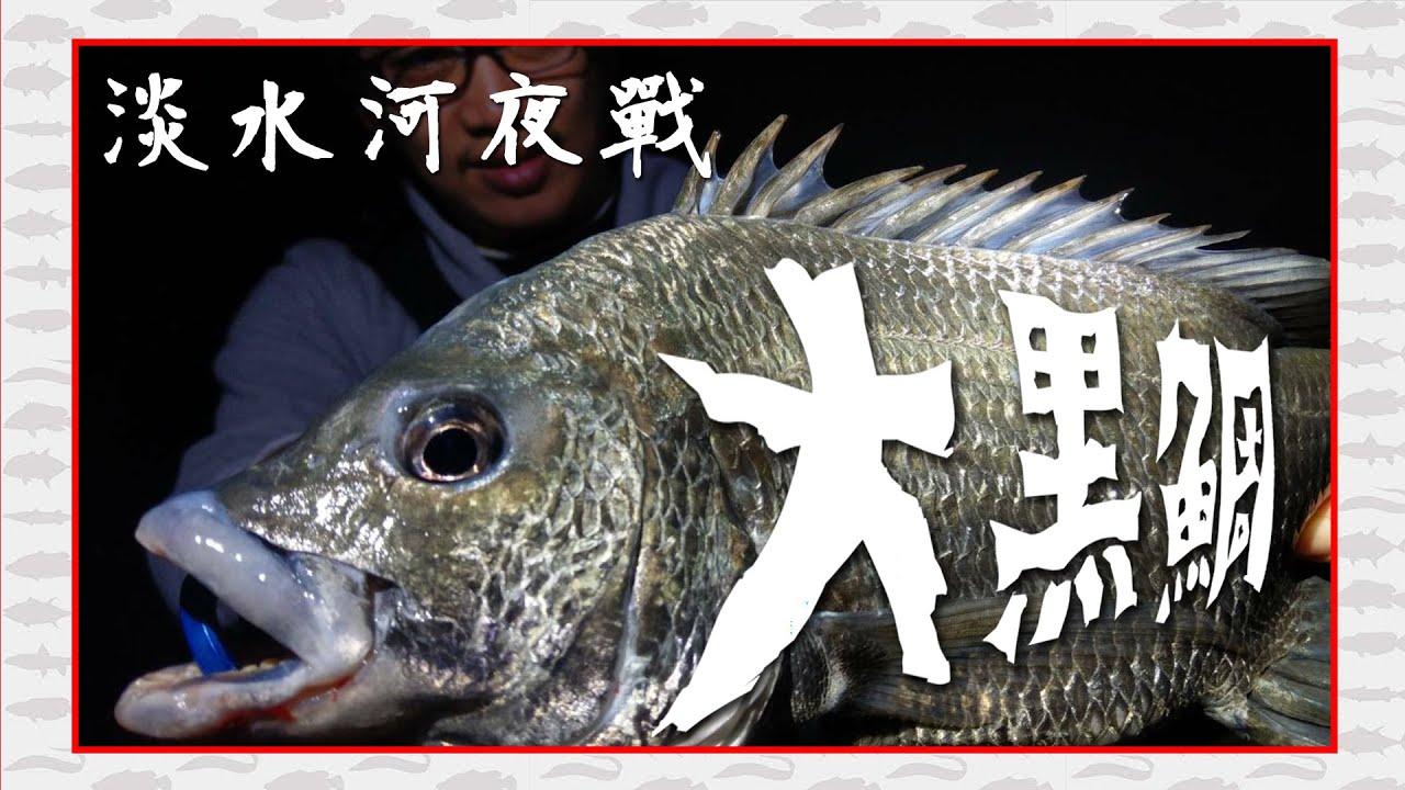 淡水河挑戰夜釣大魚!沒想到這邊的黑鯛這麼兇 八里|黑格|海鱸|FOX釣點 - YouTube