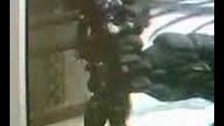 Gears of war handjob glitch