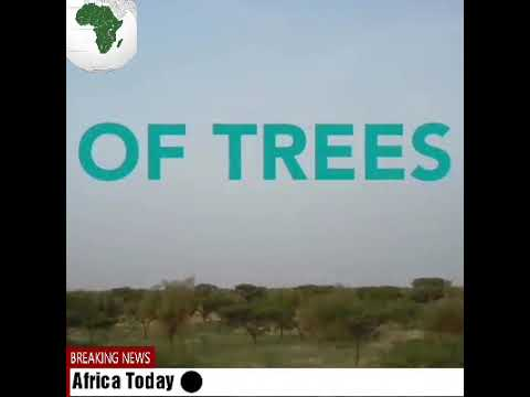 Africa Daily Progress and improvement