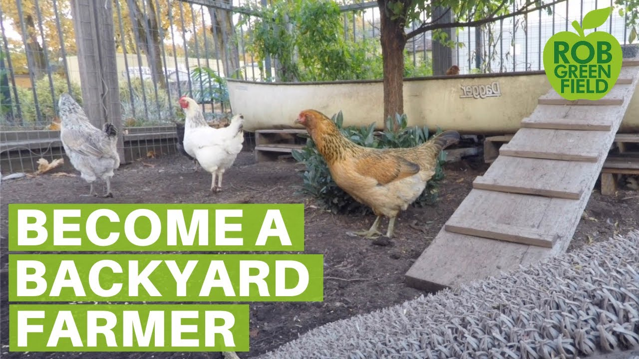 how to study to become a farmer