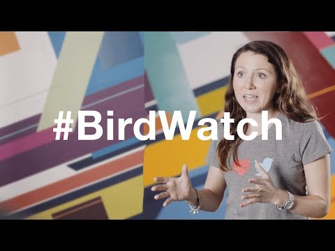 #Birdwatch: Aliza Rosen - YouTube