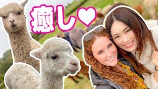 美人イギリス人友達とのある休日❤️【イギリス暮らし女子の日常vlog】