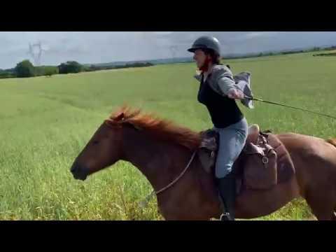 8 Octobre Projet : Adapter son Equitation aux Grands Espaces