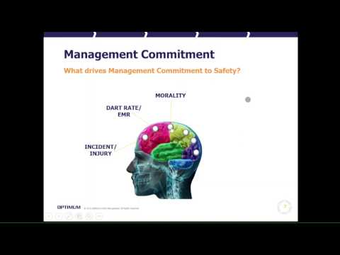 What Drives Management Commitment to Safety?