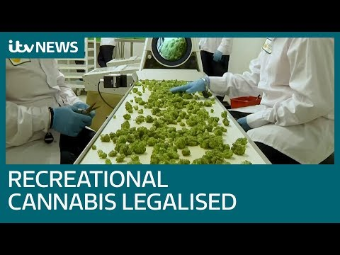 Canada becomes largest country to legalise recreational cannabis | ITV News