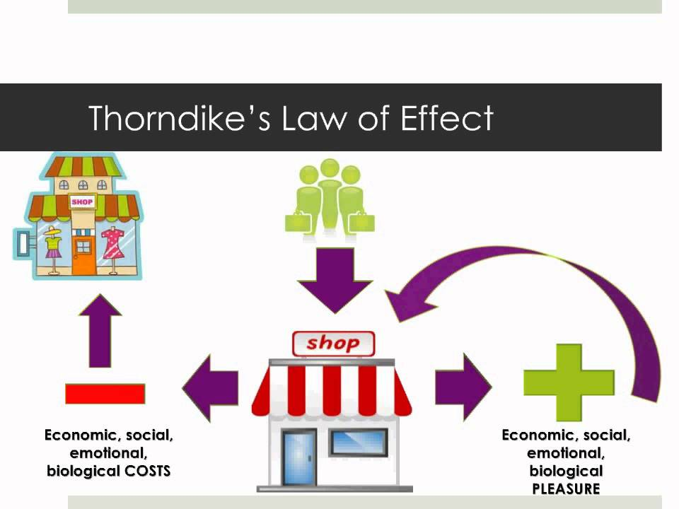 behaviourist thoery thorndikes theory of connectionism Find and save ideas about edward thorndike on pinterest thorndike: theory of connectionism accompanied by paranoia over a theory of behavior surfacing in.