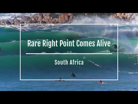 South African's rare Right Point comes alive