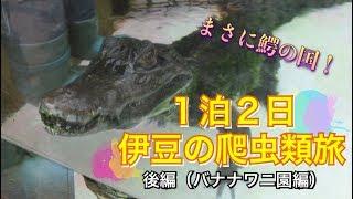 前編 https://www.youtube.com/watch?v=76sCNc3XZIw こんにちは、亀山で...