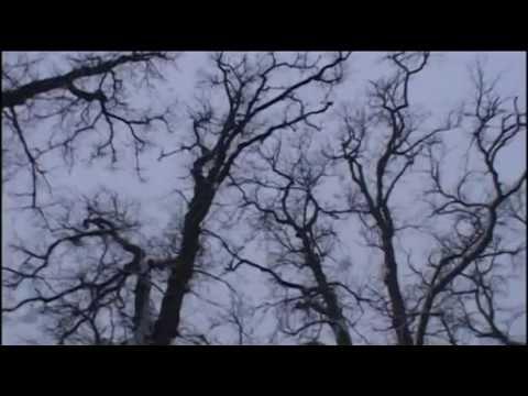 sandomierz zima