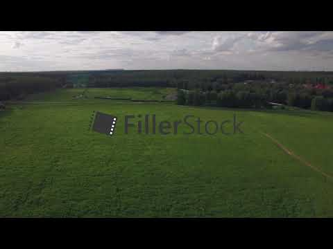 Flying over green field and rural road near the village, Russia