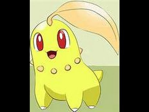 Shiny Chikorita Evolution - Pokemon - T-Shirt   TeePublic