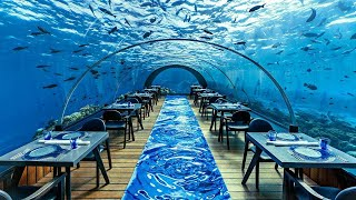 10 Most Expensive Restaurants In The World