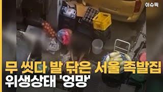 무 씻다 발 닦은 식당은 서울 족발집 위생상태 '엉망'…