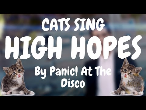 Cats Sing High Hopes by Panic! At The Disco | Cats Singing Song