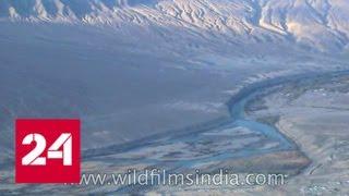 Смотреть видео Рукотворная катастрофа: Индия перекроет реки на границе с Пакистаном - Россия 24 онлайн