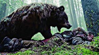 Топ 5 сумасшедших битв животных против человека снятых на камеру