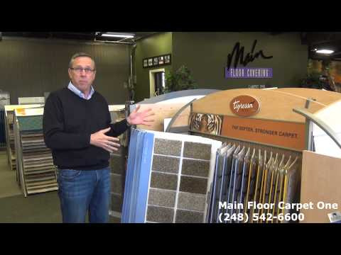 Tigressa Premium Nylon Carpet Holiday Sale in Royal Oak, Michigan