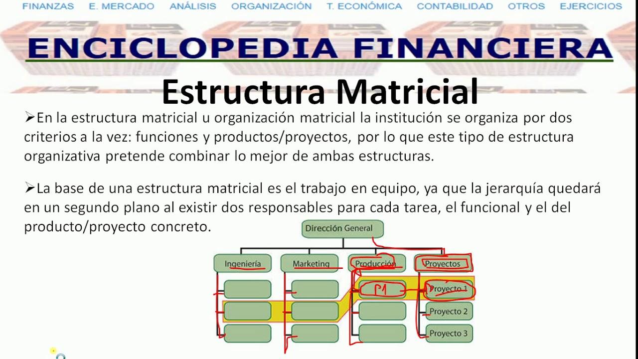 Tipos De Estructuras Organizacionales By Martin Rodriguez
