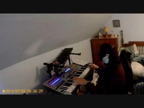 cASIO xW-p1 AND rOLAND M-Vs1 sound demoth#2  C=64 remix