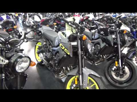 Motorcycle Window Shopping Dual Sport