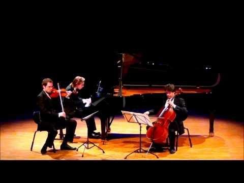 """Sibelius Piano Trio """"Lovisa"""", JS 208 (1888) 1. Allegro"""