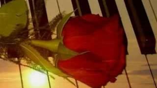 Nikt nie chce żyć bez miłości - Magda Durecka