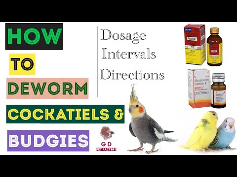 How to deworm
