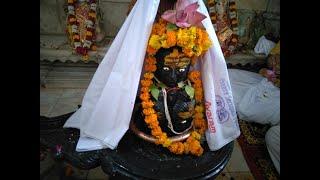 Rudra Abhishek Puja and Homa