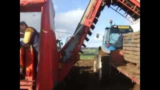 Potato harvest time, 2012, Northern Ireland