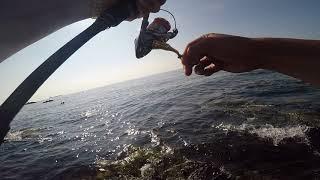 Рыбалка в Корее на море.лаврак и рыба угай морская краснаперка