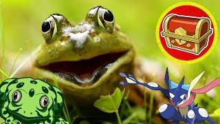 Top 5 Best and Worst Frogs in Video Games - Hidden Chest EX