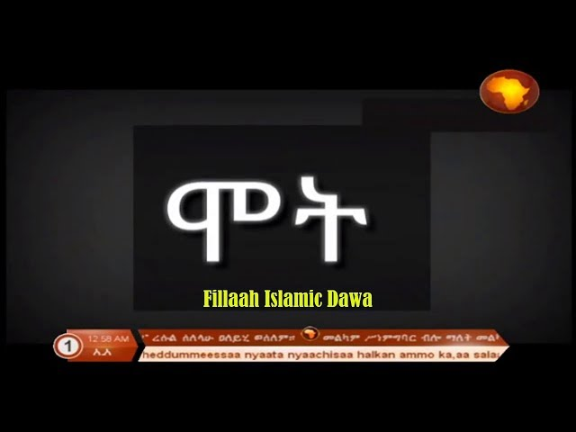 ??... Best Amharic Nesheda | ? ??? ??? ?? ???? ???