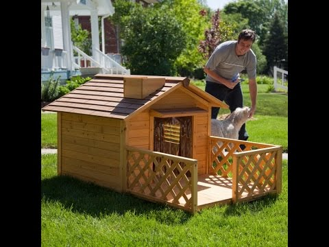 DIY simple dog house plans YouTube