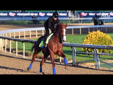 Placing bets? The names you need to know for the Kentucky Derby