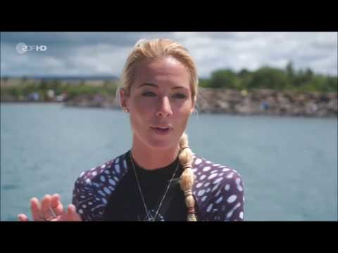 OCEAN RAMSEY! Die Frau, die vor  Hawaii mit den  Haien lebt!