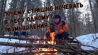 Зимний поход в лес без палатки. Почему страшно одному ночевать в лесу?