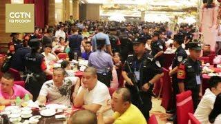Приняли оптом. Полиция задержала сразу 142 бандита во время свадьбы в городе Шэньчжэнь [Age0+]