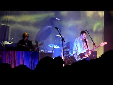 Wicked Gil, Band of Horses (Live)