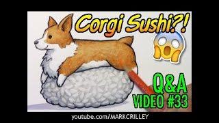 CORGI SUSHI?! Q&A Video #33