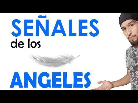 14 Señales de tus ángeles o guías.