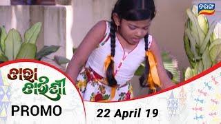 Tara Tarini 22 April 19 Promo Odia Serial - TarangTV