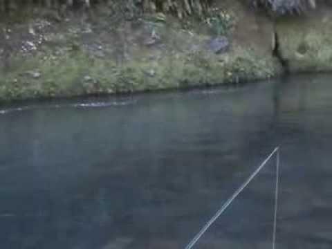 Raft Fishing The Upper Tongariro River