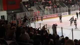 Saale Bulls gewinnen Derby 1:0-Sieg gegen Leipzig 14.11.2014