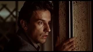 Трейлер: Три цвета: Красный / Trois couleurs: Rouge (1994) (Кшиштоф Кесьлёвский)