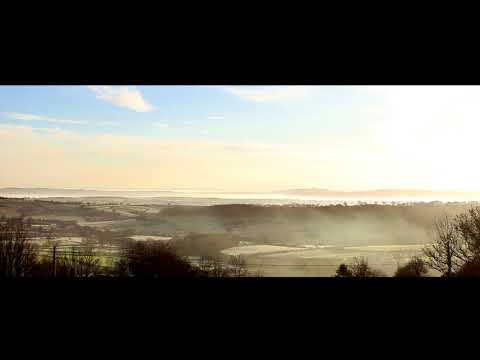 Will Cookson - Stickfigure Dreams