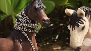 "Schleich Horse Movie - Coral Cove FINALE Episode 3 ""To The Rescue"""