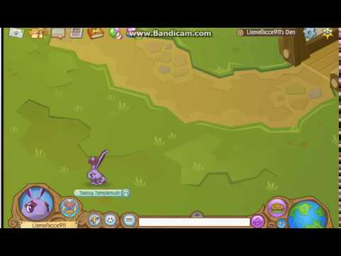 HOW TO HACK ANY ANIMAL JAM ACCOUNT (STILL WORKS JULY 2015)